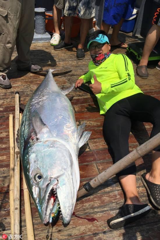 长1.73米重180斤! 海钓爱好者南海钓到创纪录超大金枪鱼!  【3】
