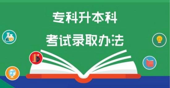 山东:2020年专升本取消专业综合课考试科目