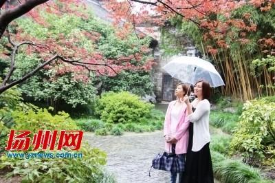 10月2日扬州局部暴雨 后天气温跌破20℃