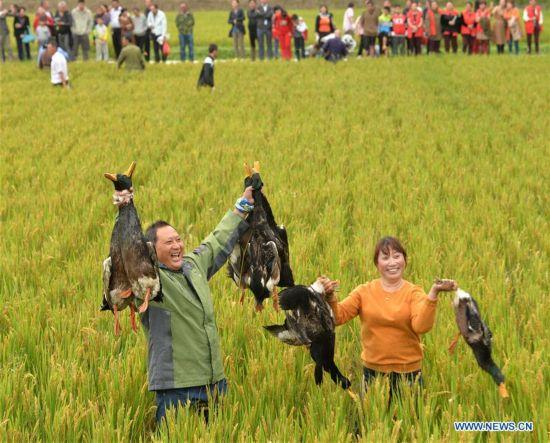 #CHINA-HOLIDAY ACTIVITIES (CN)