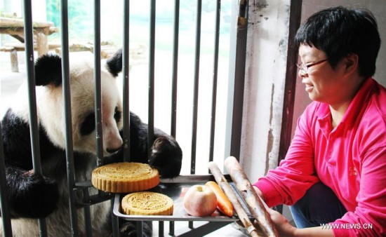 #CHINA-MID-AUTUMN FESTIVAL-CELEBRATION-GIANT PANDA (CN)