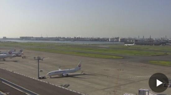 宠物狗脱逃在羽田机场跑道乱窜40分钟 14趟航班被迫推迟