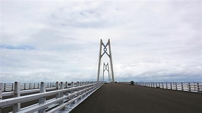 港珠澳大桥力争年底具备通车条件