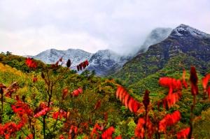 """延庆区局部地区迎来雨夹雪天气""""海坨戴雪""""景观精彩上演"""
