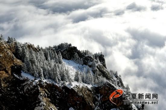 最早降雪之后迎来最美贺兰山云海