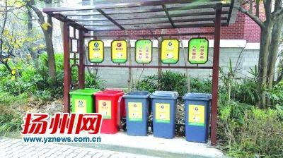 """告别""""一袋装""""""""一桶倒"""" 扬州农村开始垃圾分类"""