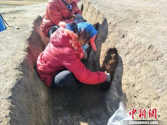 长春地区发现新石器时代遗存填补松花江流域人类历史空白感人情感故事