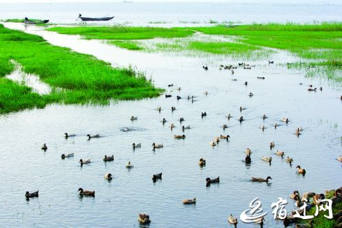 骆马湖宿迁水域无采砂船的目标将实现