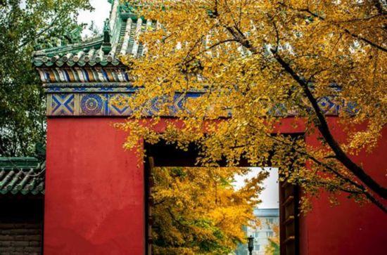 老舍張愛玲莫言等名家告訴你 北京的秋天應該這樣玩