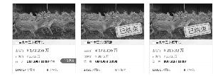 苏州372头梅花鹿进行变卖 起拍价1722560元