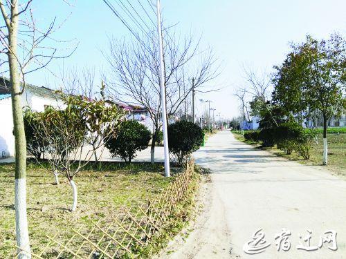 泗阳县新袁镇三岔村