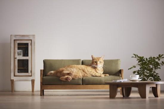 日本家具工匠宣传奇招:可爱猫咪来帮忙