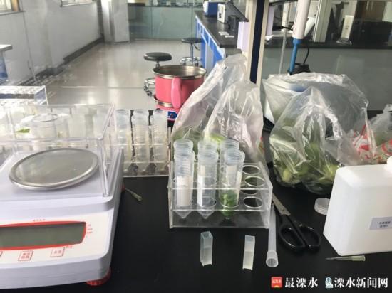 区食品快检中心已检测食品8000余批次 (2).JPG