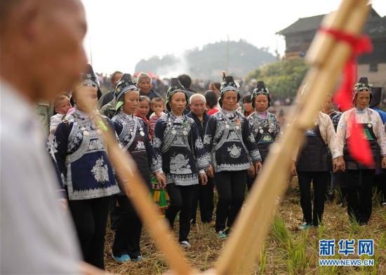 贵州丹寨:水族同胞欢庆端节