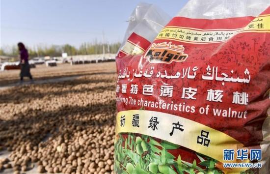 (经济)(3)新疆叶城:特色林果助农增收