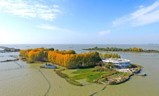 航拍洪泽湖大墩岛:树木包围 黄绿交错