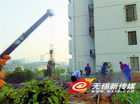 无锡城管首用吊机清理楼顶菜地800多平方米