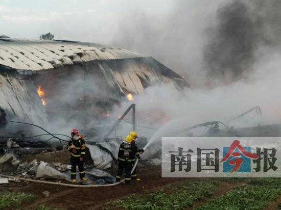 柳州一废旧回收站起大火 18辆消防车驰援(图)