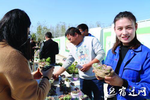 zcsheng171195