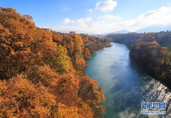 罗纳河谷深秋