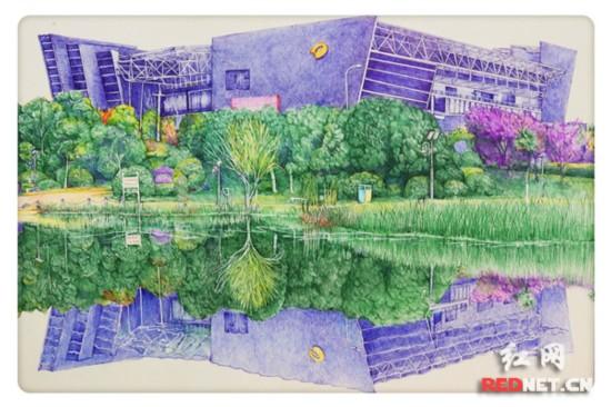 一笔一世界 大二学生用圆珠笔画出校园美景