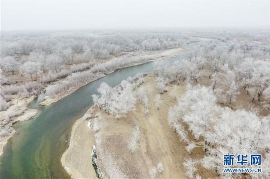 新疆额尔齐斯河流域现雾凇景观