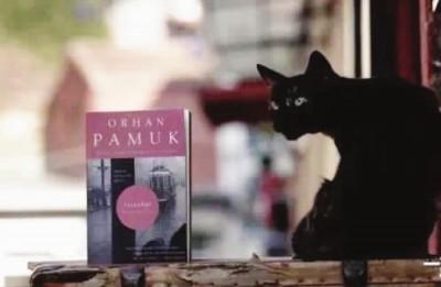 作家帕慕克用15年的时间走了世界上的1743家博物馆