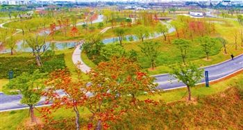 泰州祥泰公园开园 融入海绵城市建设理念