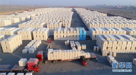 新疆铁门关:10万吨公检皮棉陆续装车外运