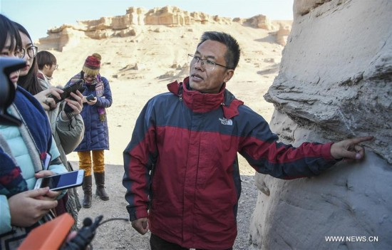 CHINA-XINJIANG-FINDINGS-PTEROSAURS-FOSSILIZED EGGS (CN)