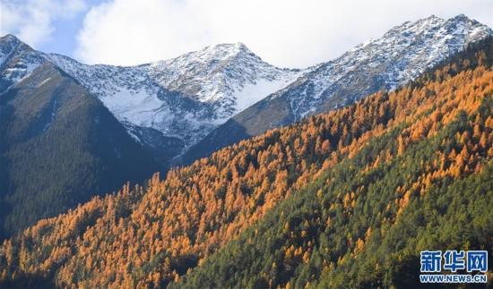 (新华视界)(5)西藏高原景色美