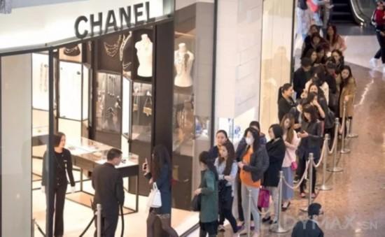 Gucci 再次赶超爱马仕!全球主要奢侈时尚品牌第三季度业绩汇总