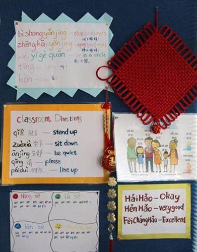 奥克兰Willow Park小学(新西兰天维网 资料图)
