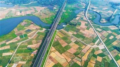 """江畔绿""""地毯""""铺出产业新路        高空俯瞰位于海口市新坡镇的绿化草坪基地,格子形的草圃错落有致地分布在南渡江畔。目前,新坡镇草皮种植面积达6024亩,年产值可达3614万元。"""