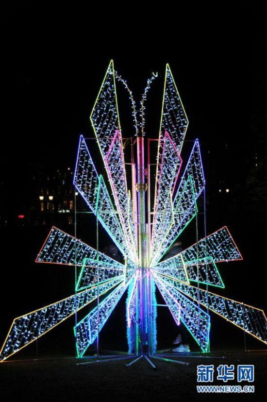 """""""圣诞树""""的艺术"""