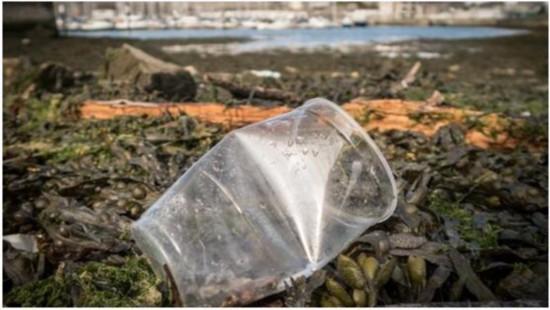 据英国《泰晤士报》2017年12月19日报道,英国环境大臣迈克尔戈夫(Michael Gove)将于2018年1月份宣布: 将减少海洋塑料污染将作为二十五年环境改善计划的一个重要目标。 据报道,早前,英国政府曾在竞选时承诺我们这代人要成为先例,要让环境状况好于之前。英国环境大臣迈克尔戈夫在阐述英政府如何兑现这一承诺时,将把一次性塑料问题作为重点内容。同时,戈夫也在积极鼓励零售商们减少各类塑料的使用量,以便更容易回收包装材料。 英国环境、食品及农村事务部(Defra)正在调查废物回收设定标准的本
