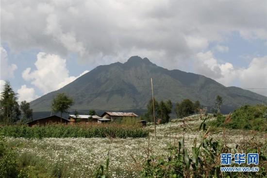 (国际・图文互动)(5)通讯:非洲火山下的野保接力