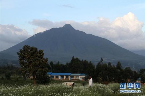 (国际・图文互动)(4)通讯:非洲火山下的野保接力