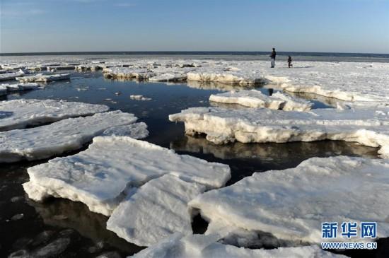 #(环境)(2)渤海大连北部海域现极地冰原景观