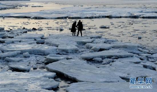 渤海大连北部海域现极地冰原景观