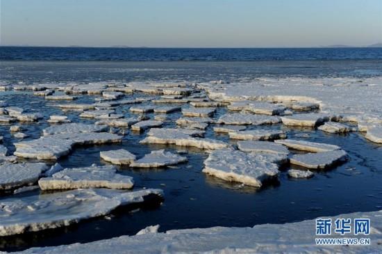 #(环境)(3)渤海大连北部海域现极地冰原景观