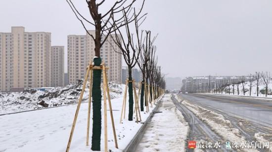 南京溧水各界工作者坚守一线 护卫城市