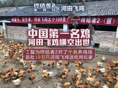 How to spell netease to eat chicken Ding really opened a chicken farm