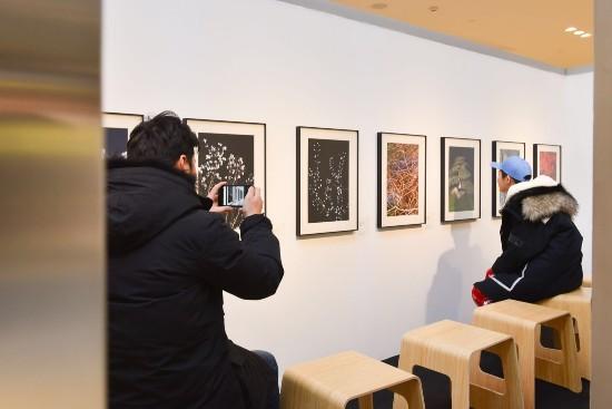 作为此次参展艺术家之一,王轶庶所展出的三个系列 '花'、 '信号'、 '无中生有',通过具象的画面,让观者感受生活中的各种可能性。