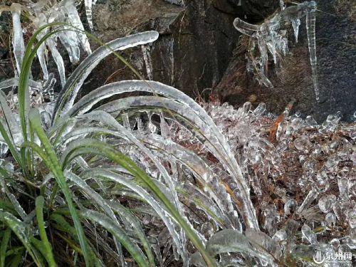 安溪现结冰或霜冻 泉州气象台继续发布霜冻蓝色预警