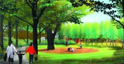 北京东城新中街城市森林公园9月底建成图片