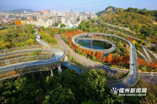 寻找福州冬日的秋