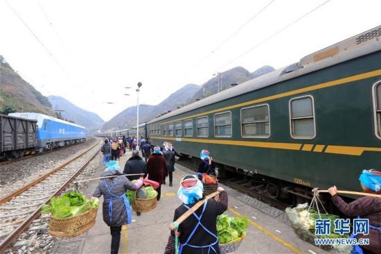 """#(社会)(1)贵州:山区""""慢火车"""" 独特风景线"""