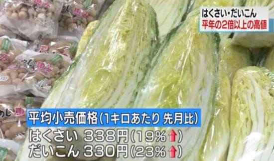 日本冬季蔬菜价格大涨白菜和白萝卜比往年贵2倍多(图)