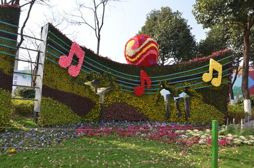 2018年1月9日,西山区20组立体花卉植物扮靓昆明冬日(熊琴) (7)